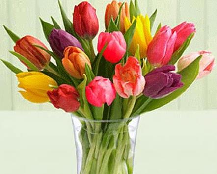 Mẹo giữ hoa tươi lâu, meo giu hoa tuoi lau