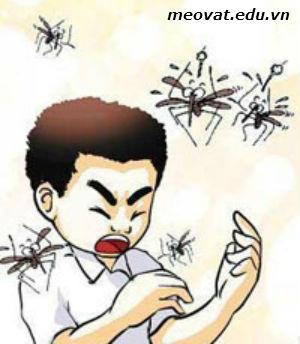 Mẹo diệt muỗi hiệu quả, meo giup ban xua duoi muoi hieu qua