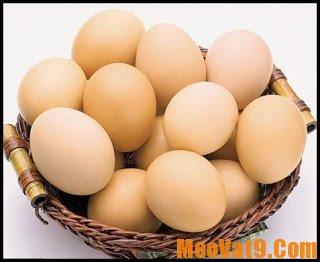 Cách bảo quản trứng gà tươi lâu và đảm bảo nhất
