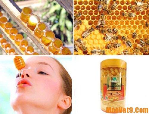 Mẹo sử dụng sữa ong chúa