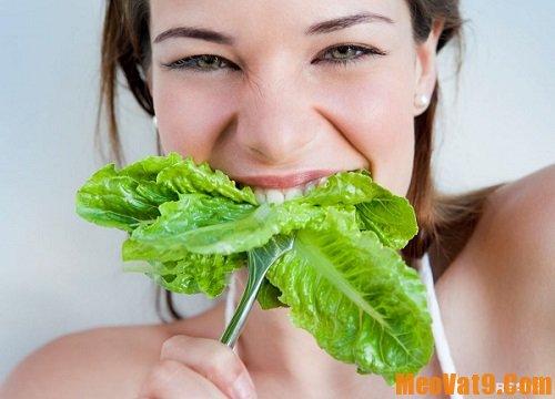 Mẹo ăn rau sống tốt cho sức khỏe