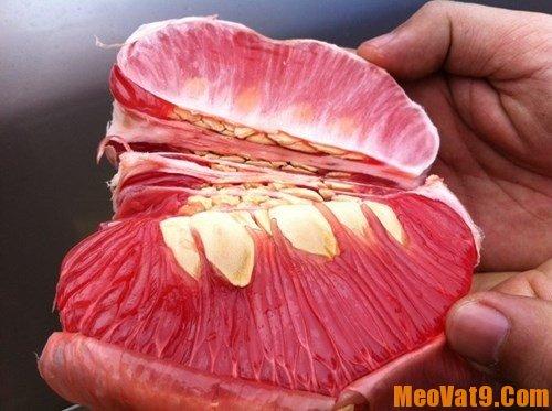 Hạt bưởi có thể làm thuốc chữa nhiều bệnh