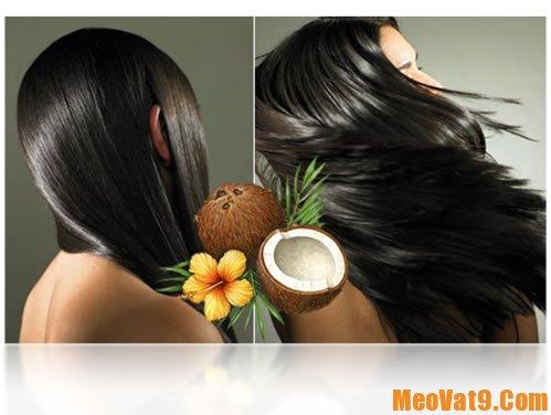 Hướng dẫn dưỡng tóc bằng dầu dừa