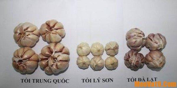 Cách phân biệt tỏi Việt Nam và Trung Quốc