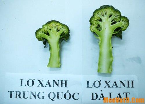 Mẹo phân biệt súp lơ Trung Quốc