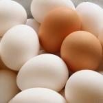 Chia sẻ kinh nghiệm phân biệt trứng cũ, mới cực chuẩn