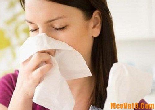 Mẹo trị cảm cúm hiệu quả