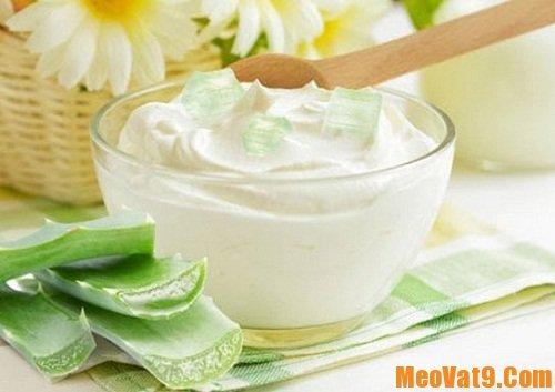 Mẹo làm sữa chua nha đam ngon nhất, hướng dẫn tự làm sữa chua nha đam tại nhà